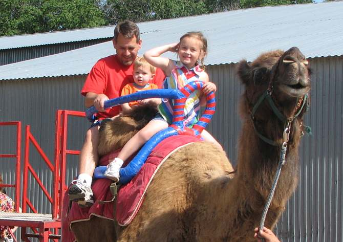 Camel riding at Hedrick's Exotic Animal Farm