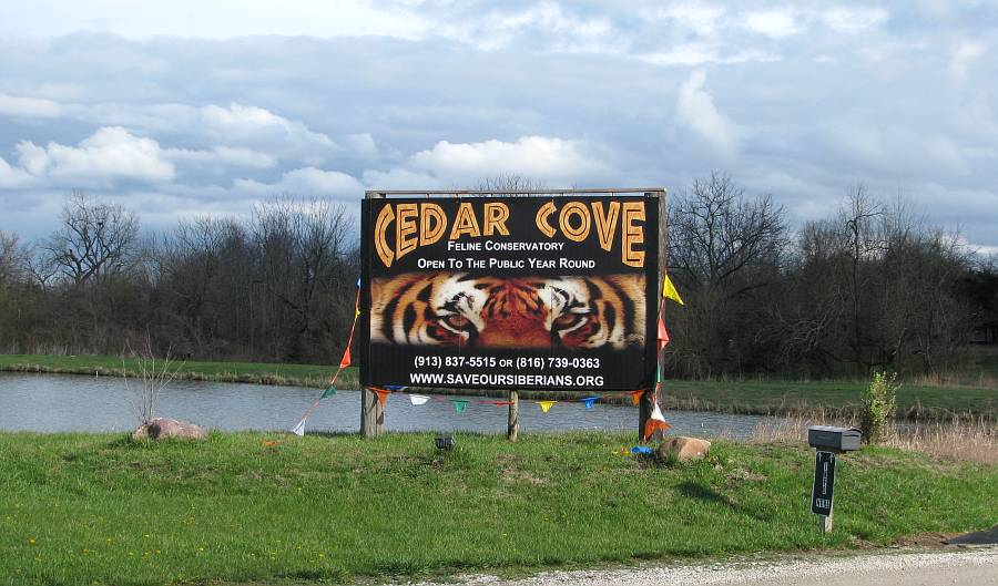 Cedar Cove Feline Conservatory and Sanctuary - Louisburg