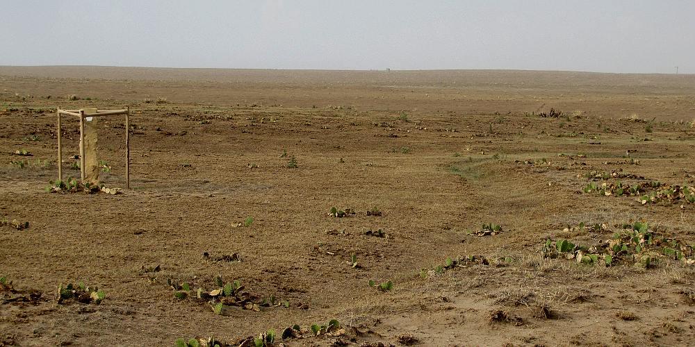 Cimarron National Grassland Elkhart Kansas