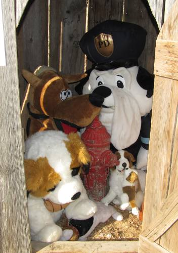 stuffed dogs in outhouse