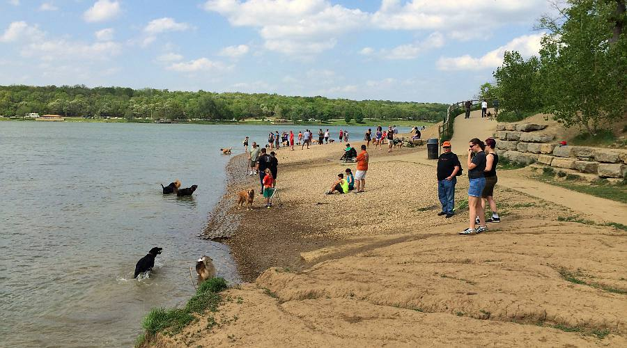 Shawnee Mission Off Leash Dog Park